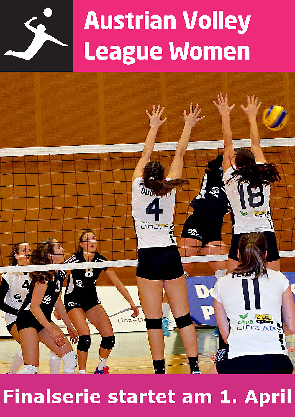 Austrian Volley League Women - FOTO © Photo Plohe