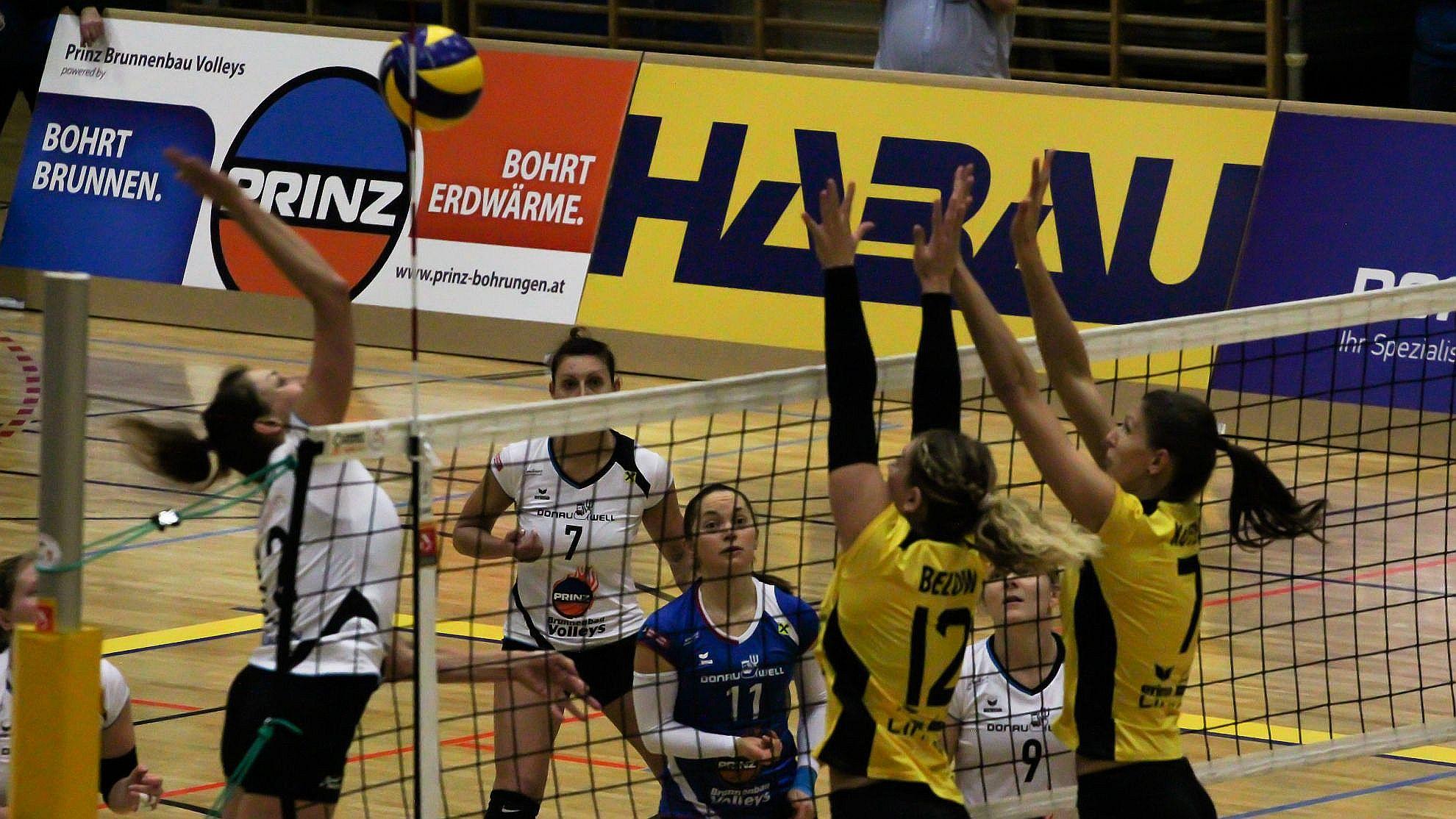 SG Prinz Brunnenbau Volleys gg. ASKÖ Linz/Steg - FOTO © Peter Maurer